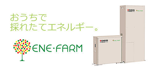 35949395420_bc9706412a.jpg
