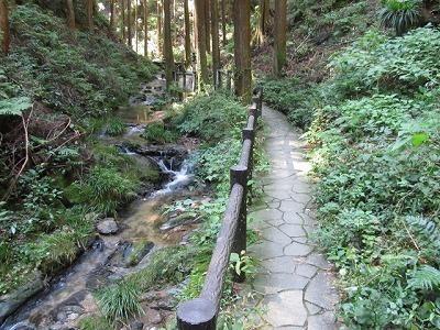 宿谷の滝への遊歩道.jpg